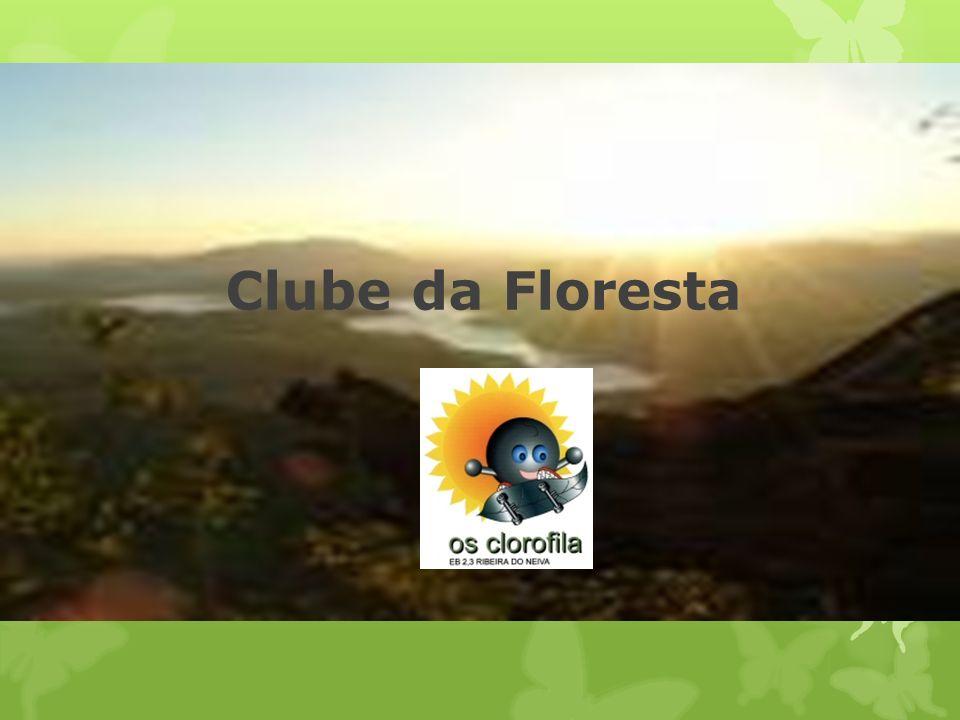 Clube da Floresta