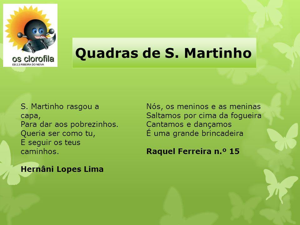 Quadras de S. Martinho Nós, os meninos e as meninas Saltamos por cima da fogueira Cantamos e dançamos É uma grande brincadeira Raquel Ferreira n.º 15