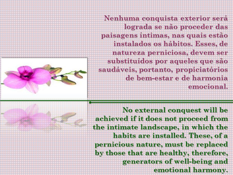 A melhor maneira, portanto, de compartilhar conscientemente da grande transição é através da consciência de responsabilidade pessoal, realizando as mu
