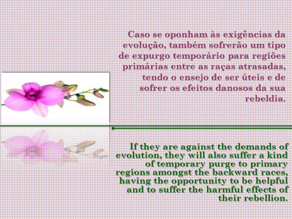Caso se oponham às exigências da evolução, também sofrerão um tipo de expurgo temporário para regiões primárias entre as raças atrasadas, tendo o ensejo de ser úteis e de sofrer os efeitos danosos da sua rebeldia.