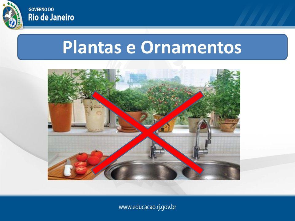 Ornamentos e plantas localizados na área de consumação ou refeitório não devem constituir fonte de contaminação para os alimentos preparados (RDC nº 216/ ANVISA)