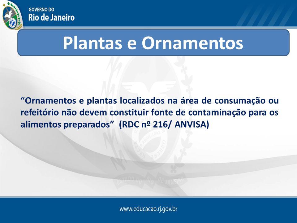 Ornamentos e plantas localizados na área de consumação ou refeitório não devem constituir fonte de contaminação para os alimentos preparados (RDC nº 2