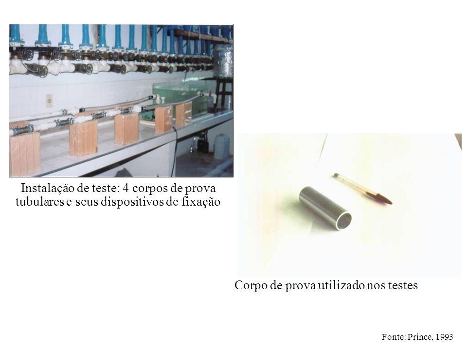 Instalação de teste: 4 corpos de prova tubulares e seus dispositivos de fixação Corpo de prova utilizado nos testes Fonte: Prince, 1993