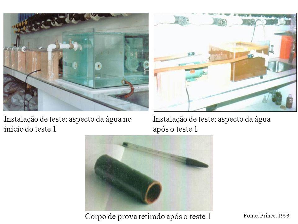 Instalação de teste: aspecto da água no início do teste 1 Instalação de teste: aspecto da água após o teste 1 Corpo de prova retirado após o teste 1 F