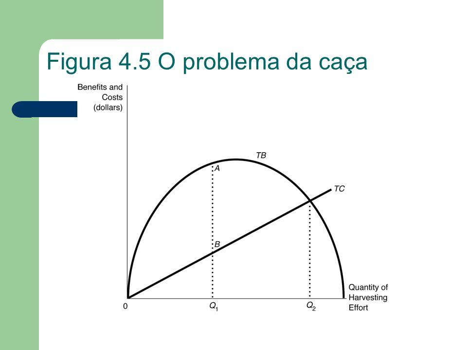 Figura 4.5 O problema da caça
