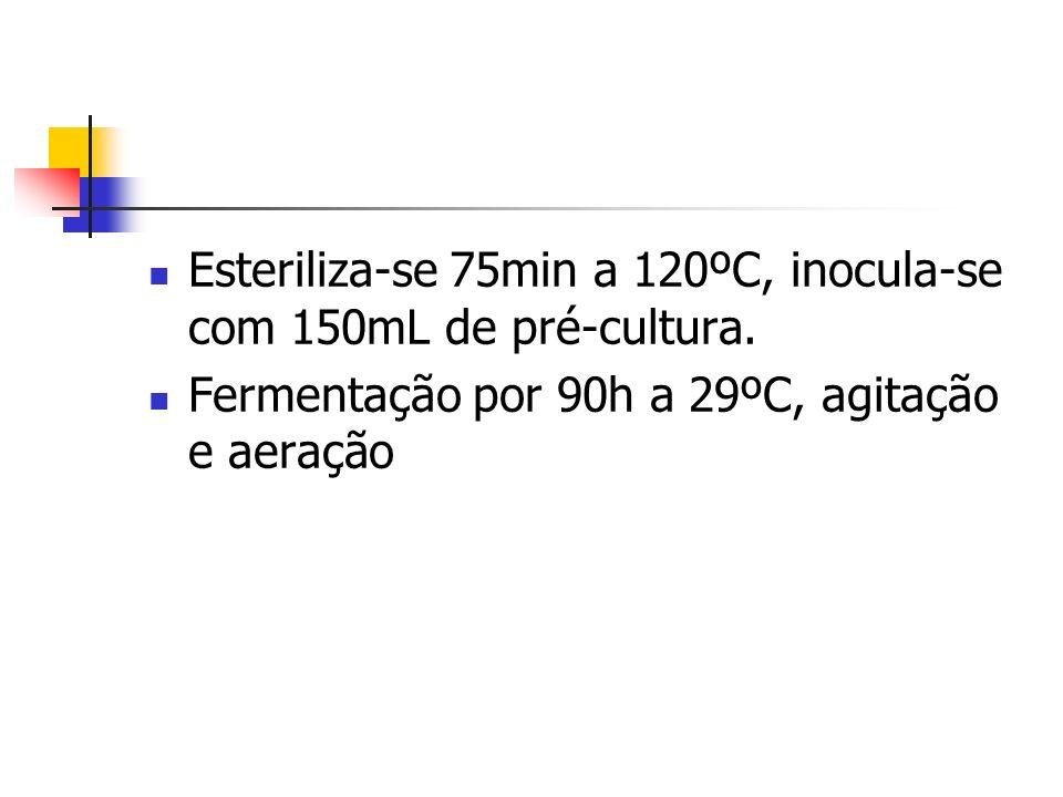 Esteriliza-se 75min a 120ºC, inocula-se com 150mL de pré-cultura. Fermentação por 90h a 29ºC, agitação e aeração