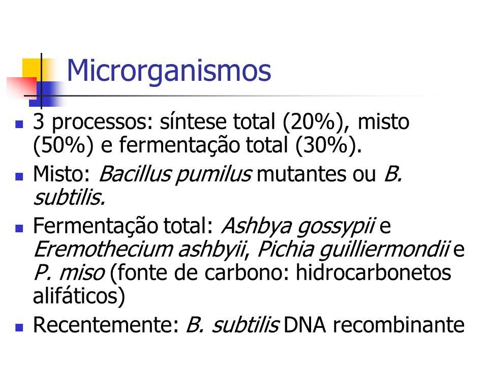 Microrganismos 3 processos: síntese total (20%), misto (50%) e fermentação total (30%). Misto: Bacillus pumilus mutantes ou B. subtilis. Fermentação t