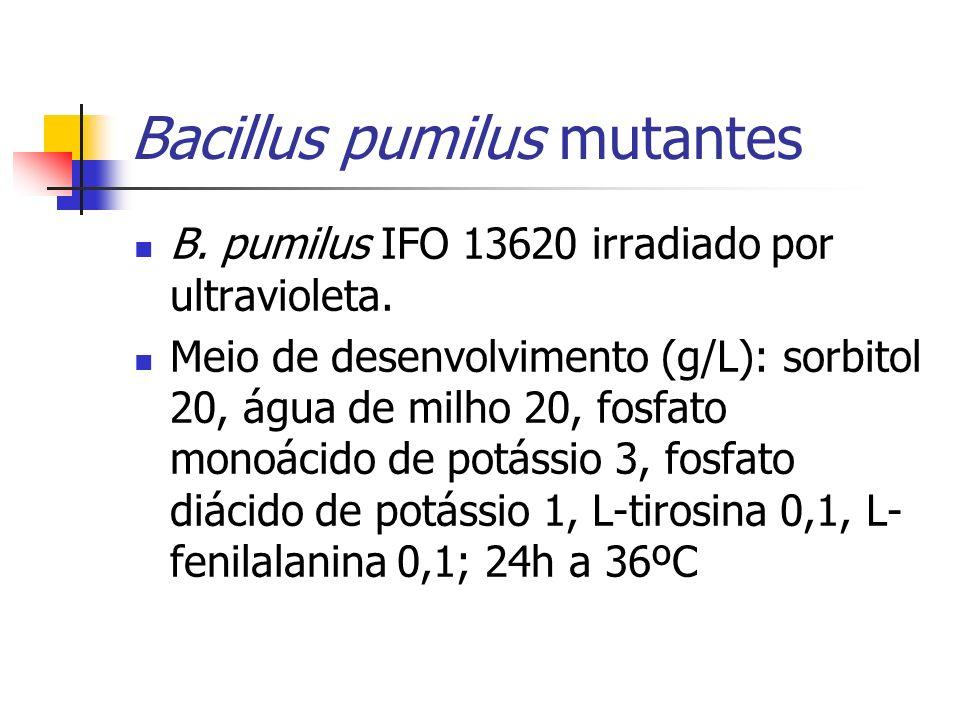 Bacillus pumilus mutantes B. pumilus IFO 13620 irradiado por ultravioleta. Meio de desenvolvimento (g/L): sorbitol 20, água de milho 20, fosfato monoá