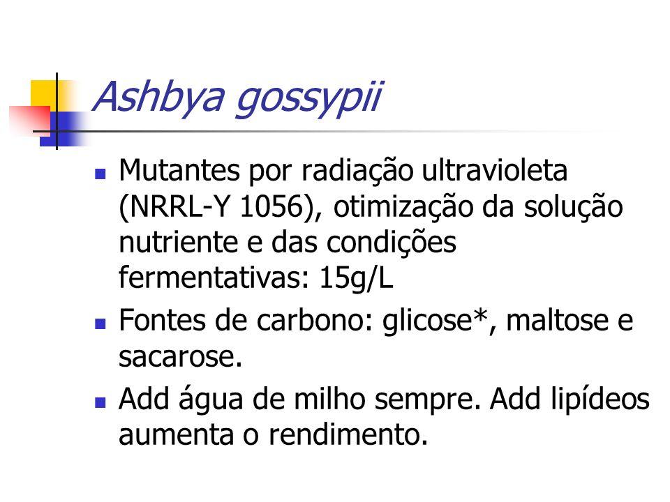 Ashbya gossypii Mutantes por radiação ultravioleta (NRRL-Y 1056), otimização da solução nutriente e das condições fermentativas: 15g/L Fontes de carbo