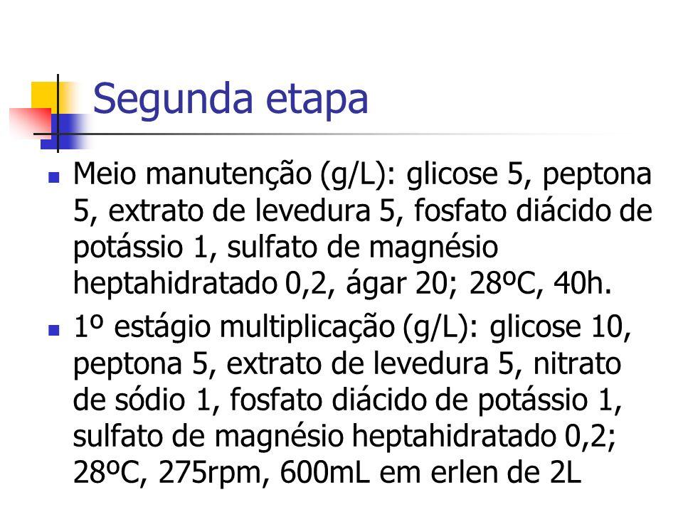 Segunda etapa Meio manutenção (g/L): glicose 5, peptona 5, extrato de levedura 5, fosfato diácido de potássio 1, sulfato de magnésio heptahidratado 0,