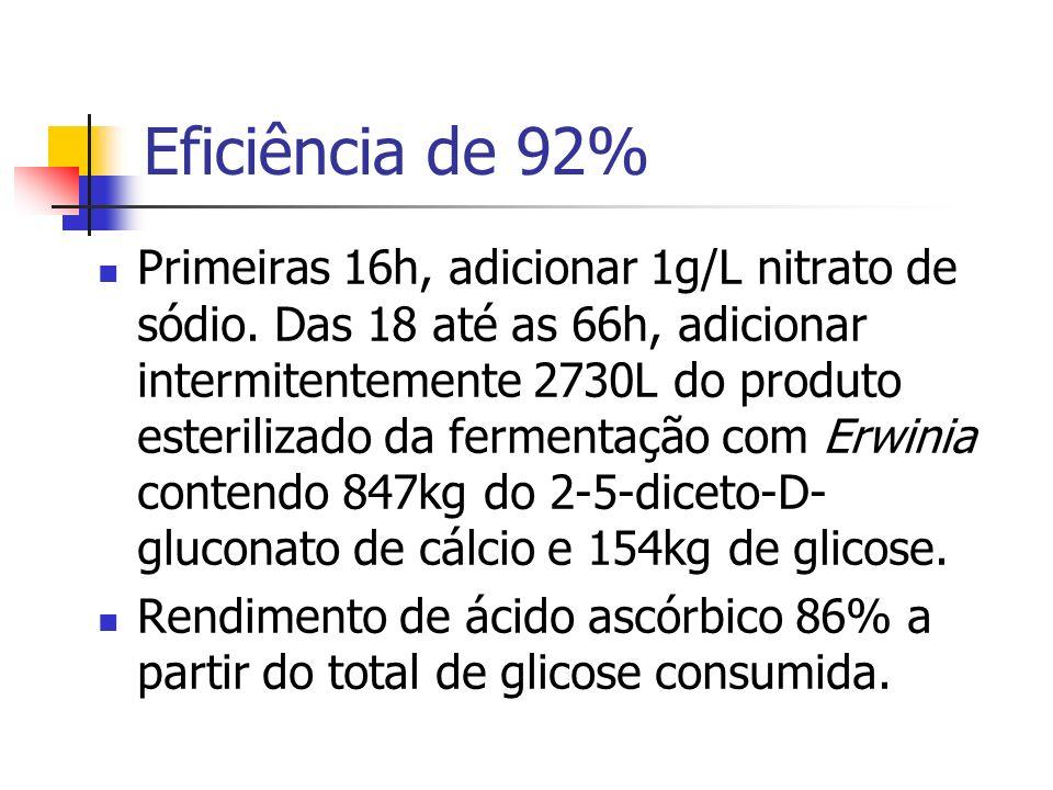 Eficiência de 92% Primeiras 16h, adicionar 1g/L nitrato de sódio. Das 18 até as 66h, adicionar intermitentemente 2730L do produto esterilizado da ferm