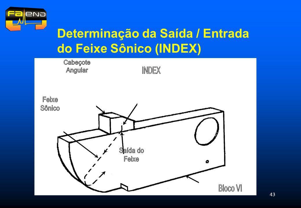 43 Determinação da Saída / Entrada do Feixe Sônico (INDEX)