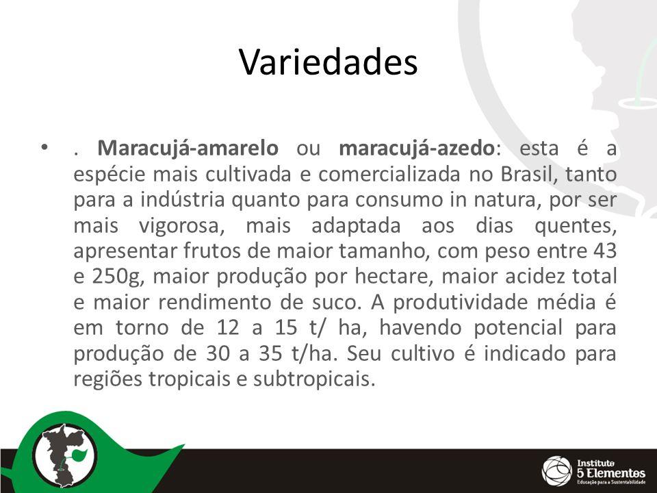 Variedades. Maracujá-amarelo ou maracujá-azedo: esta é a espécie mais cultivada e comercializada no Brasil, tanto para a indústria quanto para consumo