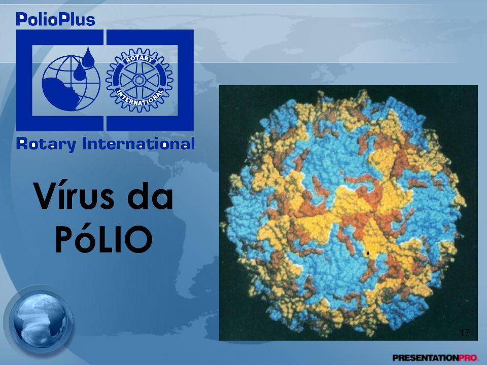 Vírus da PóLIO 17