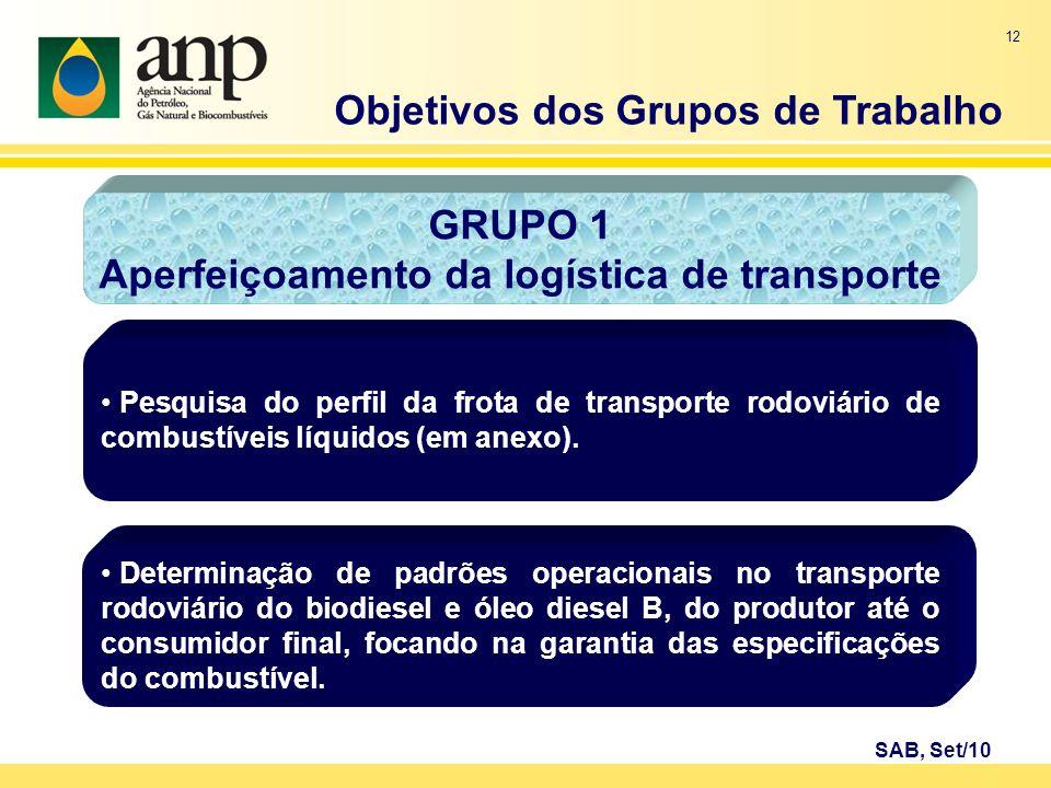 12 GRUPO 1 Aperfeiçoamento da logística de transporte Pesquisa do perfil da frota de transporte rodoviário de combustíveis líquidos (em anexo). Objeti