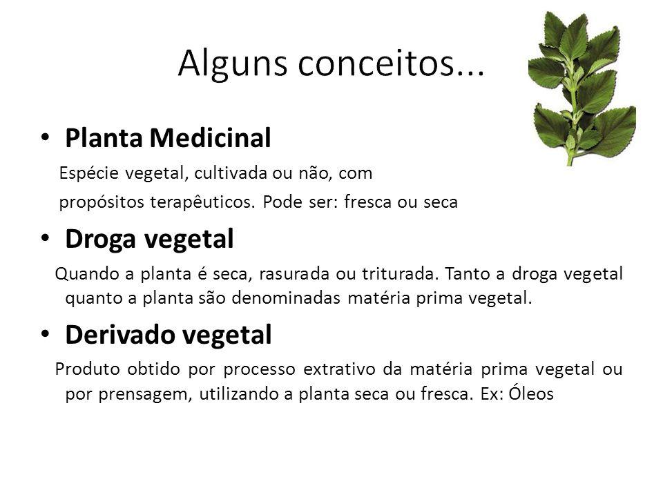 Planta Medicinal Espécie vegetal, cultivada ou não, com propósitos terapêuticos. Pode ser: fresca ou seca Droga vegetal Quando a planta é seca, rasura