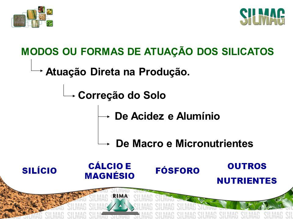 MODOS OU FORMAS DE ATUAÇÃO DOS SILICATOS Atuação Direta na Produção. Correção do Solo De Acidez e Alumínio De Macro e Micronutrientes SILÍCIO CÁLCIO E