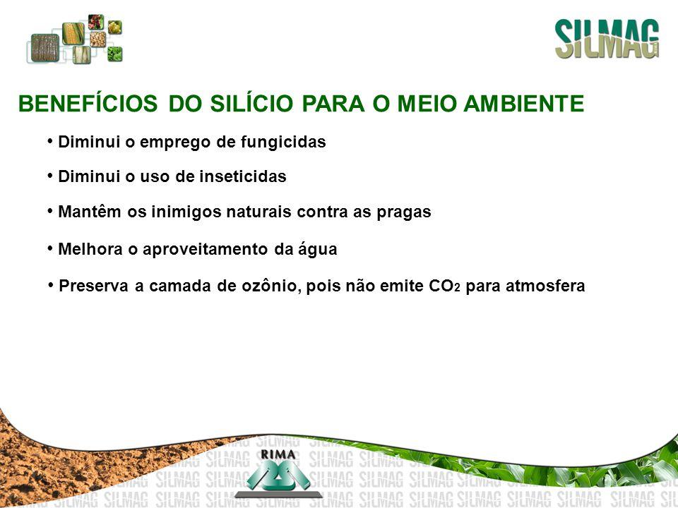 BENEFÍCIOS DO SILÍCIO PARA O MEIO AMBIENTE Diminui o emprego de fungicidas Diminui o uso de inseticidas Mantêm os inimigos naturais contra as pragas M