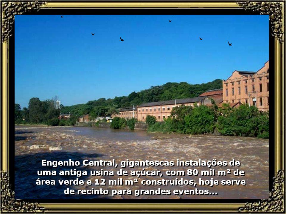 No Mirante, o prazer de saborear o melhor pintado na brasa do Brasil, se mistura ao visual deslumbrante da cachoeira e a brisa que se forma no desliza