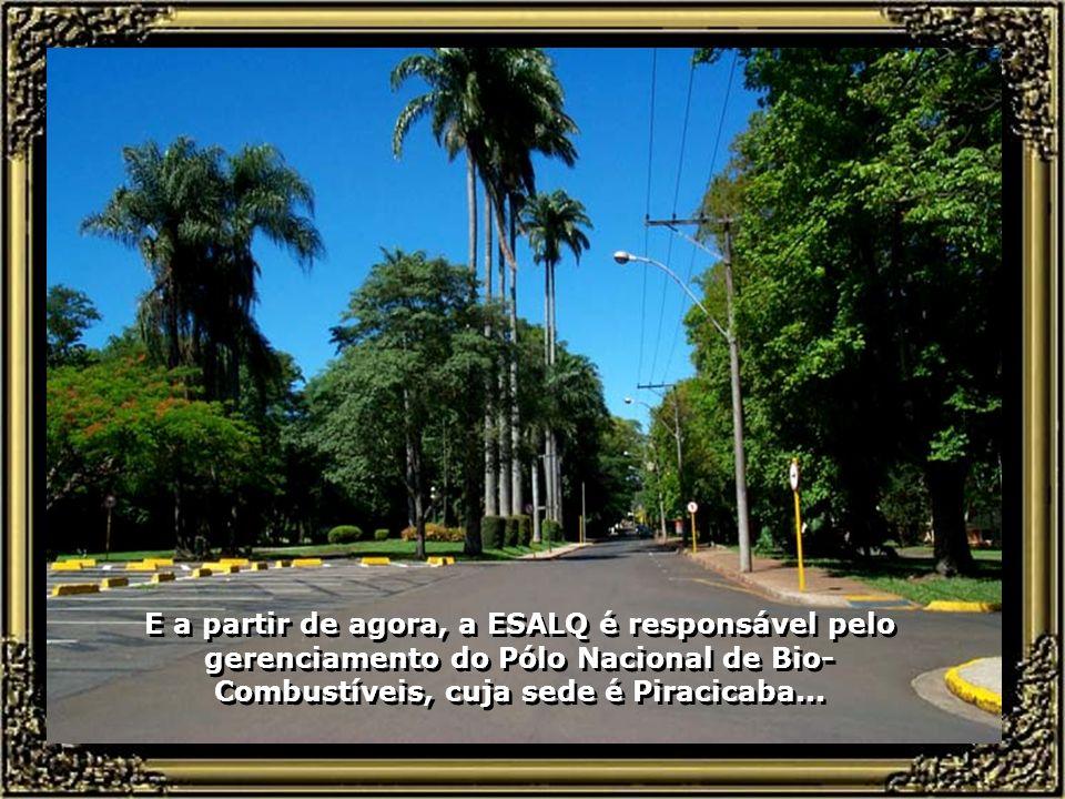 Um campus grandioso, com recursos de primeiro mundo, corpo docente de alto nível, a ESALQ-USP se constitui, hoje, numa das maiores e mais bem equipada
