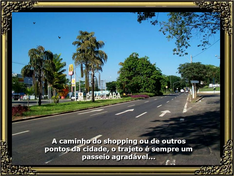 Modernas e belas avenidas compõem o sistema viário de Piracicaba... Modernas e belas avenidas compõem o sistema viário de Piracicaba...