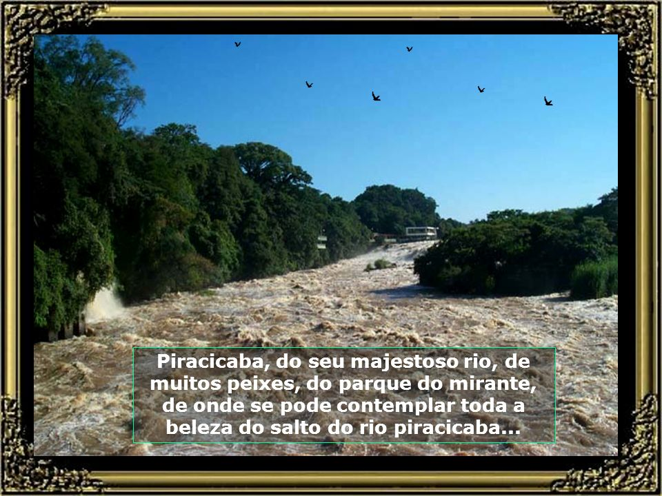 Piracicaba, do seu majestoso rio, de muitos peixes, do parque do mirante, de onde se pode contemplar toda a beleza do salto do rio piracicaba...