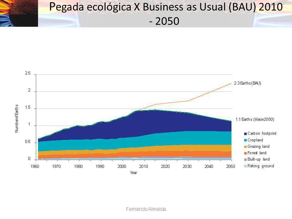 P egada ecológica X Business as Usual (BAU) 2010 - 2050 Fernando Almeida
