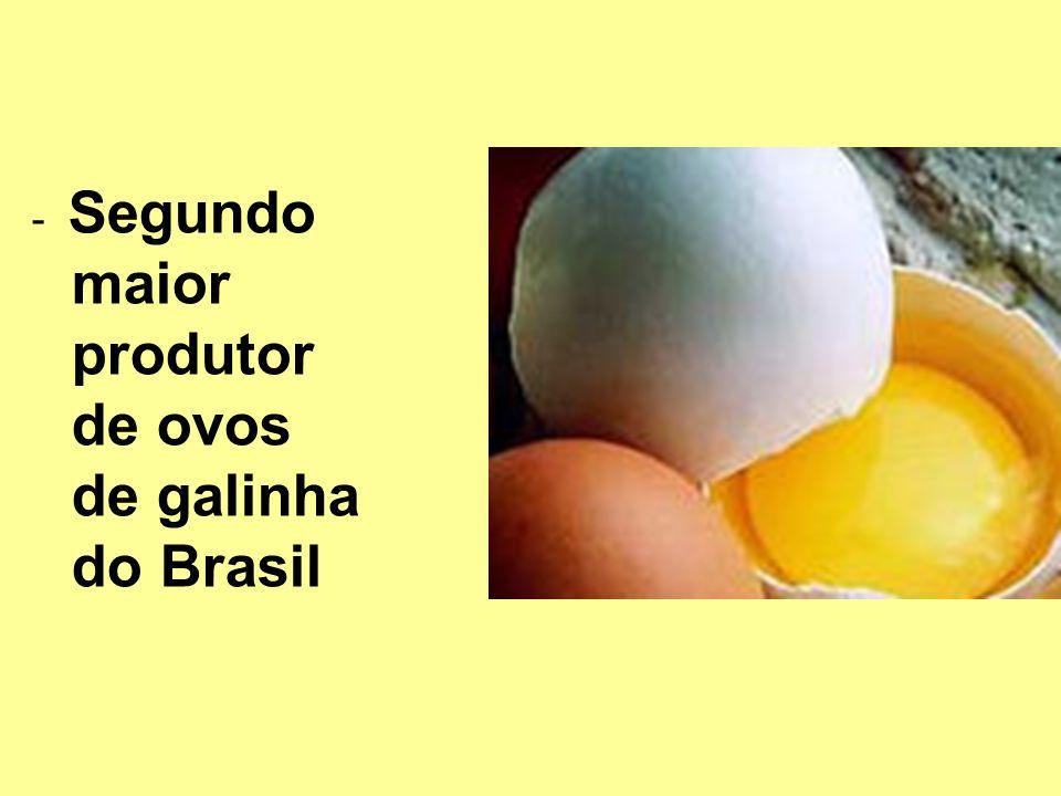 -Segunda reserva monazita do Brasil -Segundo produtor de titânio do Brasil