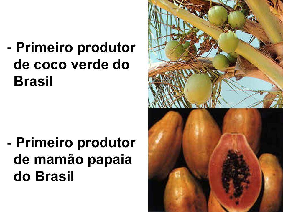 - Maior pesqueiro de Marlim do mundo - Maior reserva de algas marinhas do Brasil
