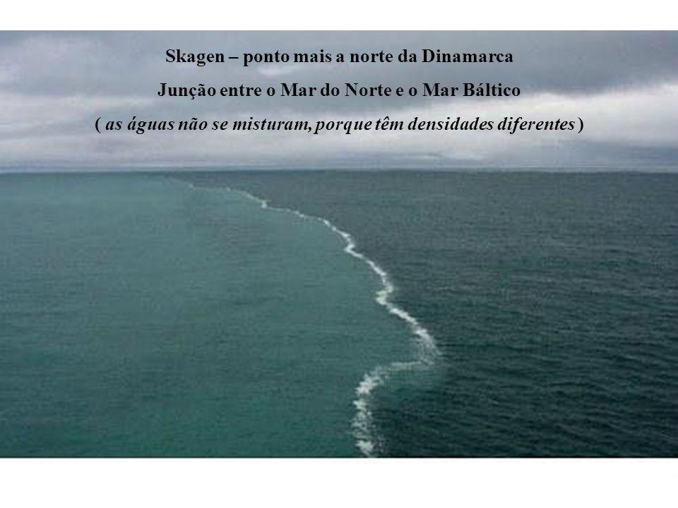 Skagen – ponto mais a norte da Dinamarca Junção entre o Mar do Norte e o Mar Báltico ( as águas não se misturam, porque têm densidades diferentes )