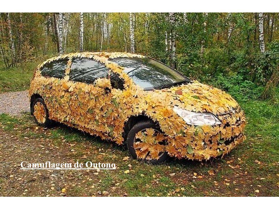 Camuflagem de Outono