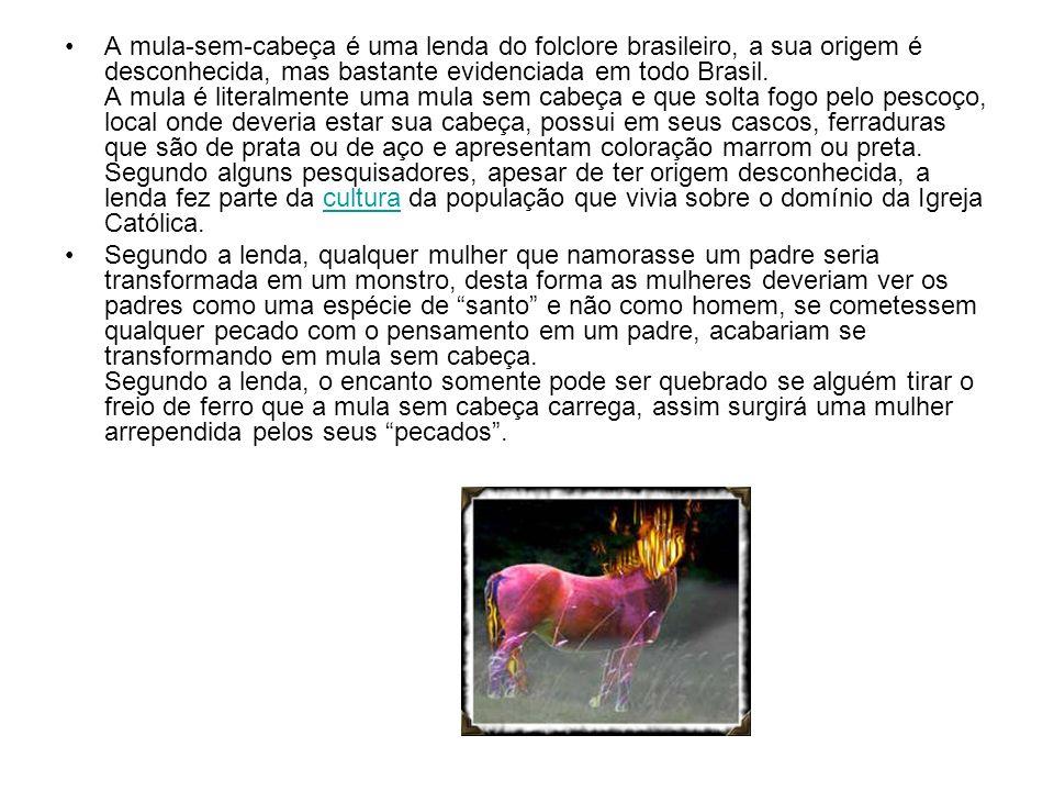 A mula-sem-cabeça é uma lenda do folclore brasileiro, a sua origem é desconhecida, mas bastante evidenciada em todo Brasil. A mula é literalmente uma