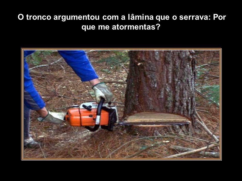 O tronco argumentou com a lâmina que o serrava: Por que me atormentas.