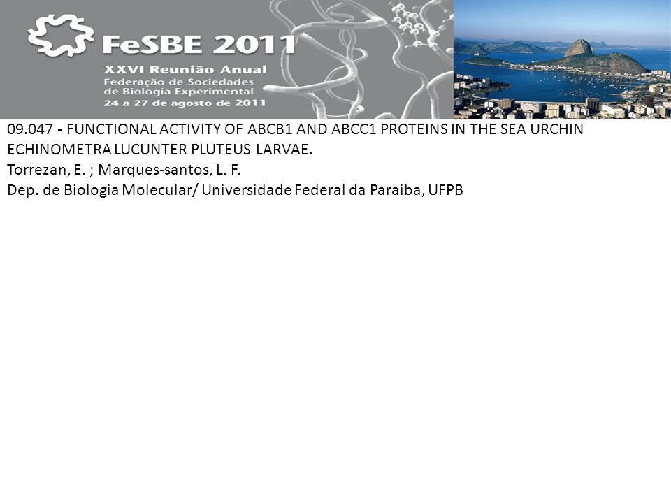 09.047 - FUNCTIONAL ACTIVITY OF ABCB1 AND ABCC1 PROTEINS IN THE SEA URCHIN ECHINOMETRA LUCUNTER PLUTEUS LARVAE. Torrezan, E. ; Marques-santos, L. F. D