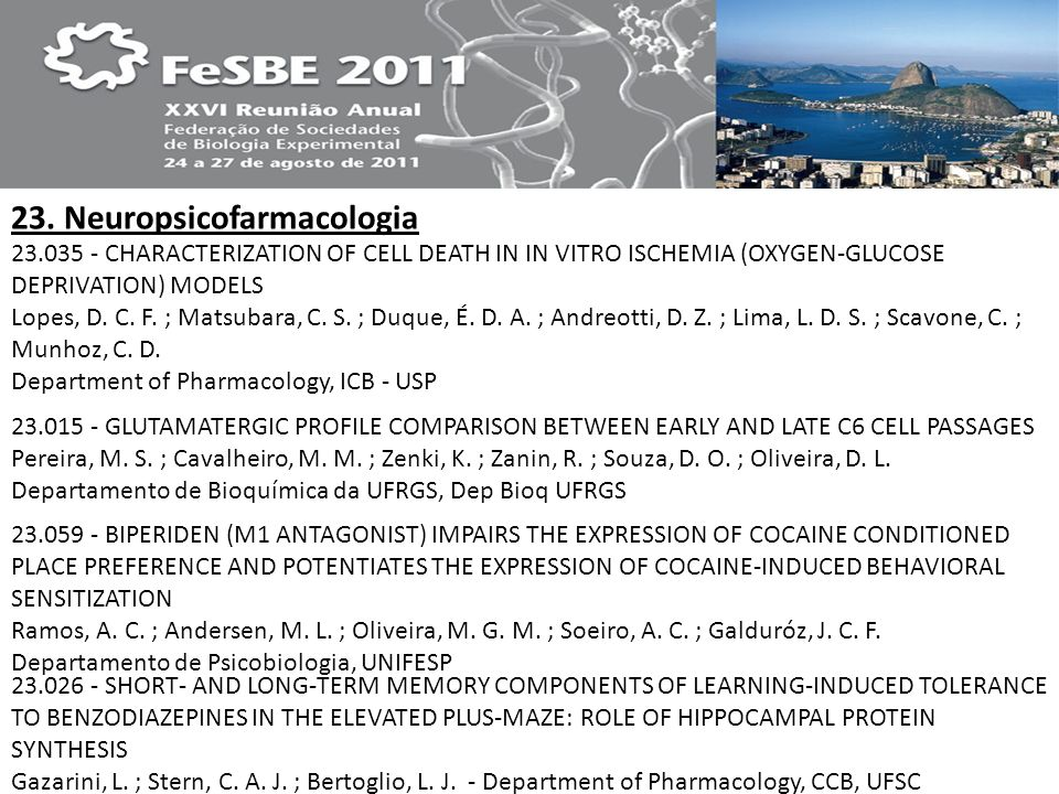 23. Neuropsicofarmacologia 23.035 - CHARACTERIZATION OF CELL DEATH IN IN VITRO ISCHEMIA (OXYGEN-GLUCOSE DEPRIVATION) MODELS Lopes, D. C. F. ; Matsubar