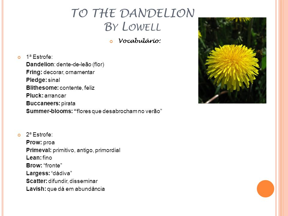 TO THE DANDELION B Y L OWELL Vocabulário: 1ª Estrofe: Dandelion: dente-de-leão (flor) Fring: decorar, ornamentar Pledge: sinal Blithesome: contente, f