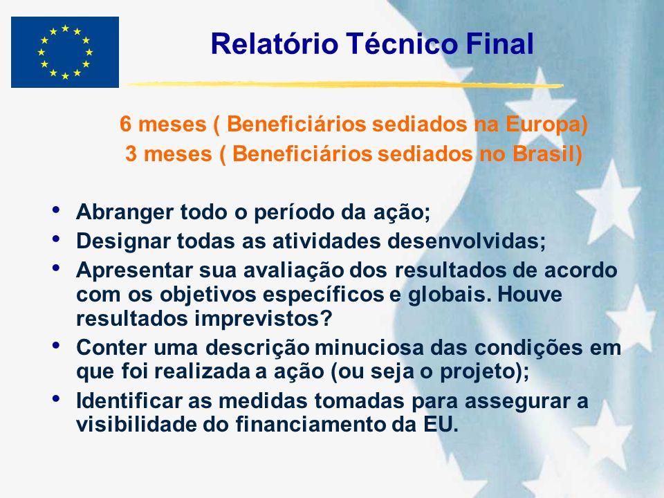 Relatório Técnico Final 6 meses ( Beneficiários sediados na Europa) 3 meses ( Beneficiários sediados no Brasil) Abranger todo o período da ação; Desig