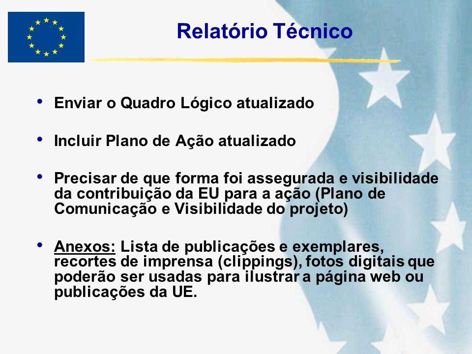Relatório Técnico (Informações complementares) Dificuldades que afetaram o andamento do projeto e as soluções encontradas e ou sugeridas.