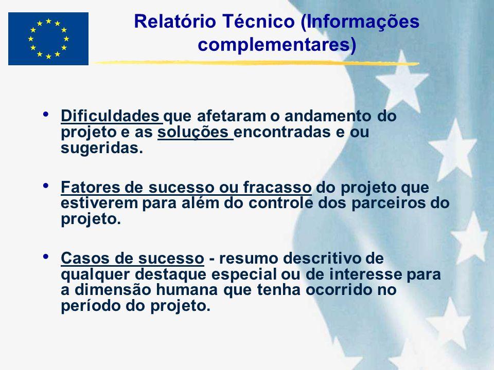 Relatório Técnico (Informações complementares) Dificuldades que afetaram o andamento do projeto e as soluções encontradas e ou sugeridas. Fatores de s