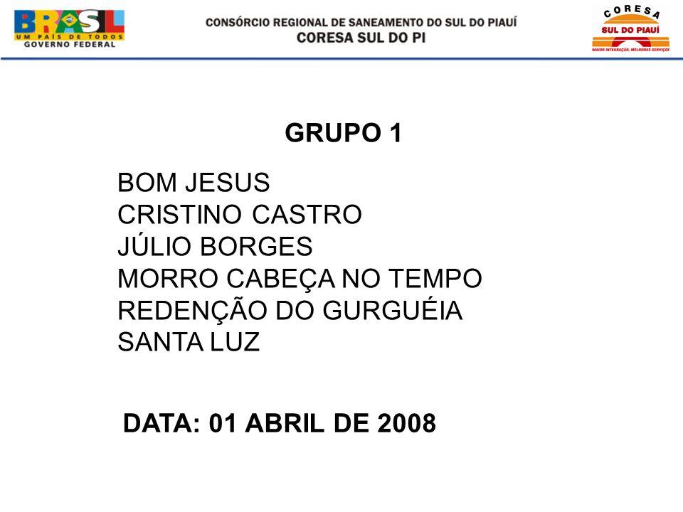 BOM JESUS CRISTINO CASTRO JÚLIO BORGES MORRO CABEÇA NO TEMPO REDENÇÃO DO GURGUÉIA SANTA LUZ GRUPO 1 DATA: 01 ABRIL DE 2008