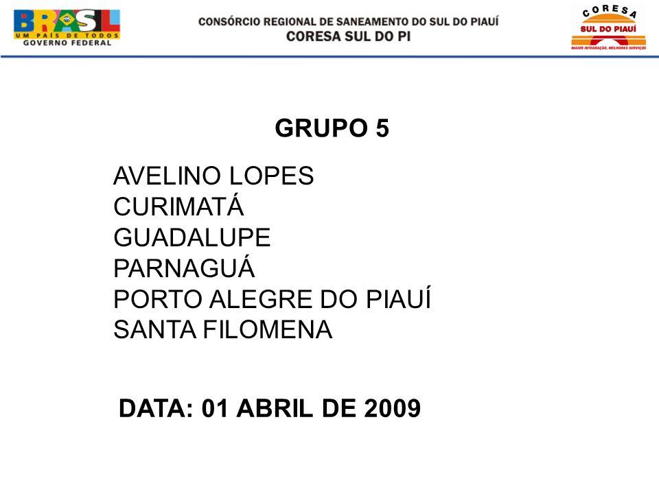 AVELINO LOPES CURIMATÁ GUADALUPE PARNAGUÁ PORTO ALEGRE DO PIAUÍ SANTA FILOMENA GRUPO 5 DATA: 01 ABRIL DE 2009
