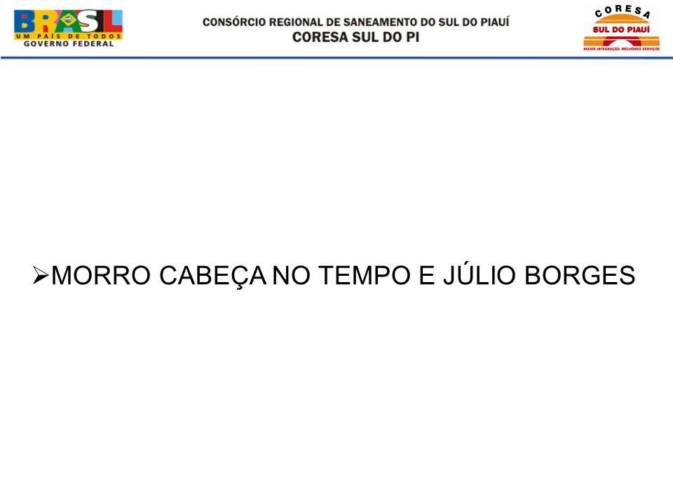 MORRO CABEÇA NO TEMPO E JÚLIO BORGES