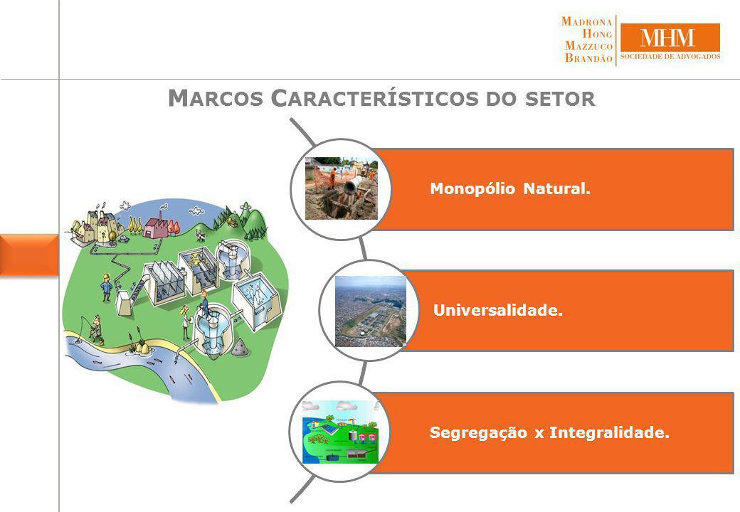 Plano Nacional de Saneamento (PLANASA).Companhias Estaduais de Saneamento Básico (CEBs).