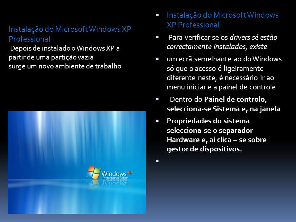 Instalação do Microsoft Windows XP Professional Para verificar se os drivers sé estão correctamente instalados, existe um ecrã semelhante ao do Window