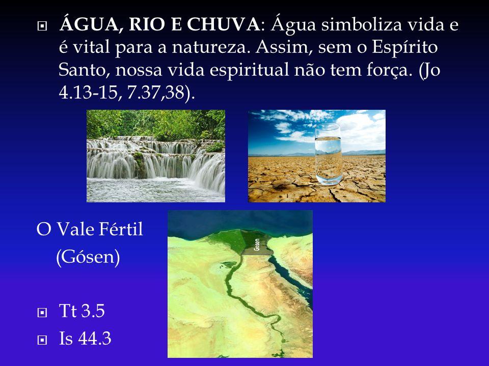 ÁGUA, RIO E CHUVA : Água simboliza vida e é vital para a natureza. Assim, sem o Espírito Santo, nossa vida espiritual não tem força. (Jo 4.13-15, 7.37