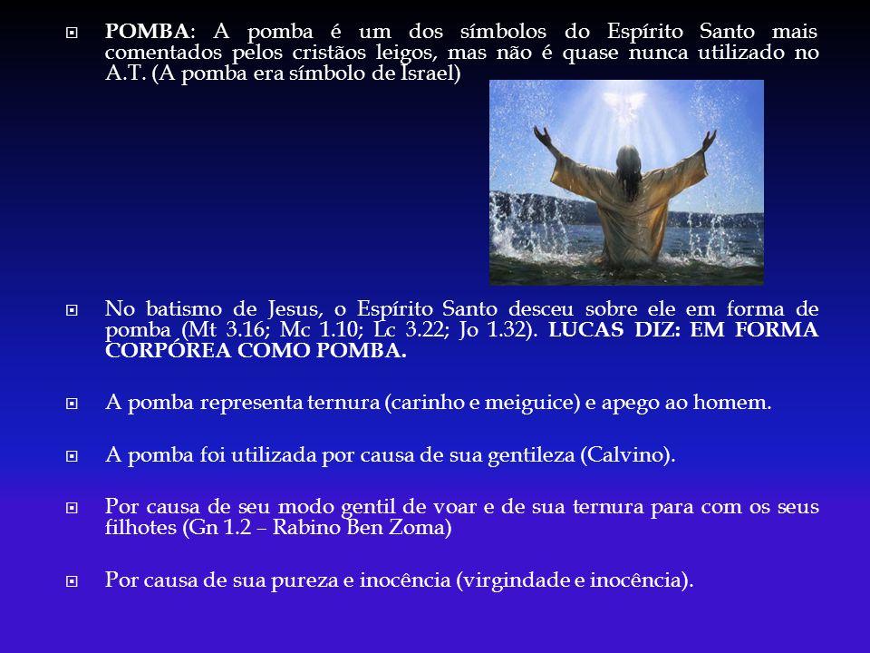 POMBA : A pomba é um dos símbolos do Espírito Santo mais comentados pelos cristãos leigos, mas não é quase nunca utilizado no A.T. (A pomba era símbol
