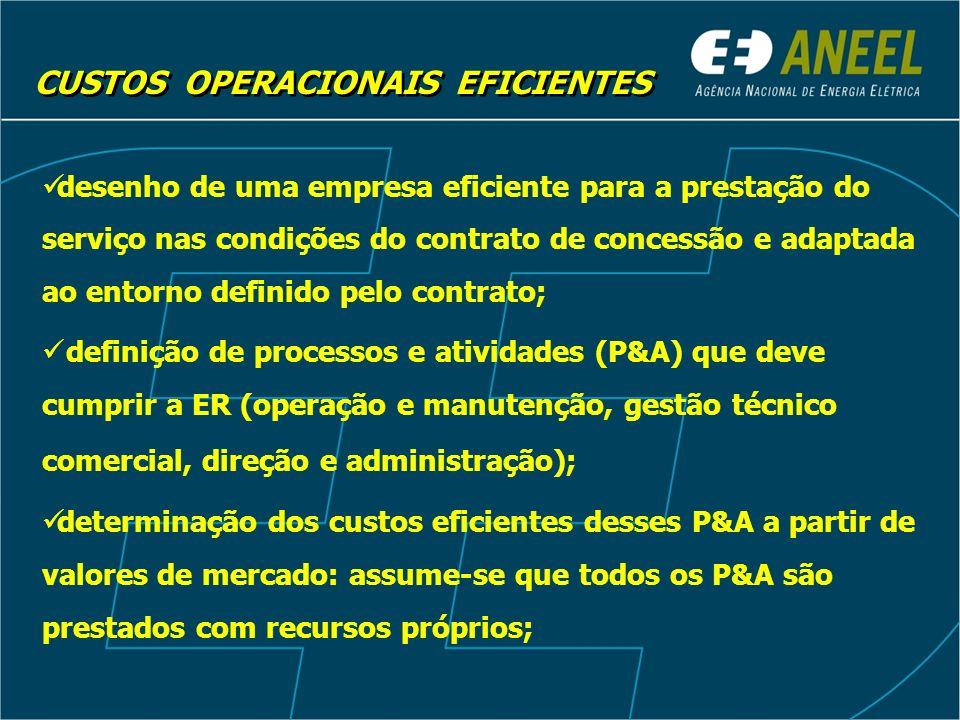 desenho de uma empresa eficiente para a prestação do serviço nas condições do contrato de concessão e adaptada ao entorno definido pelo contrato; defi