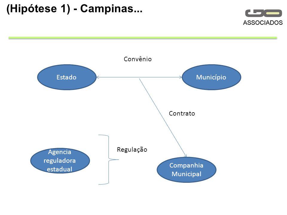 (Hipótese 1) - Campinas...