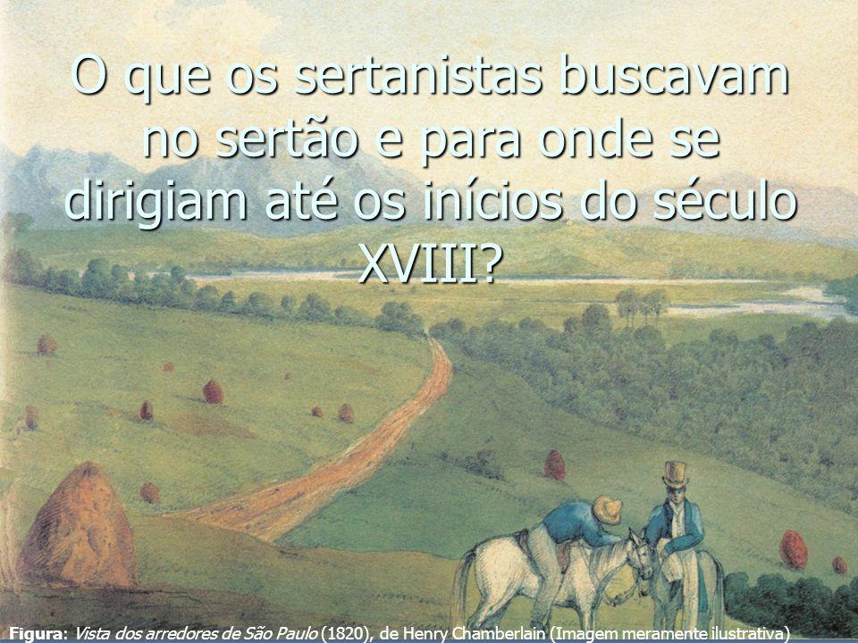 O que os sertanistas buscavam no sertão e para onde se dirigiam até os inícios do século XVIII? Figura: Vista dos arredores de São Paulo (1820), de He