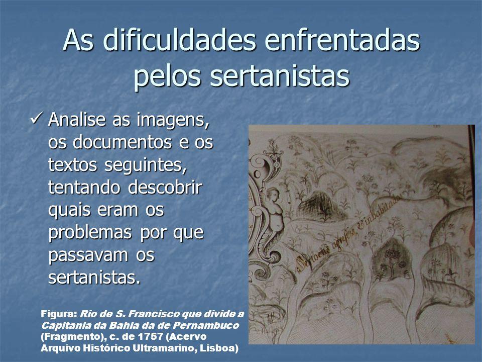 As dificuldades enfrentadas pelos sertanistas Analise as imagens, os documentos e os textos seguintes, tentando descobrir quais eram os problemas por